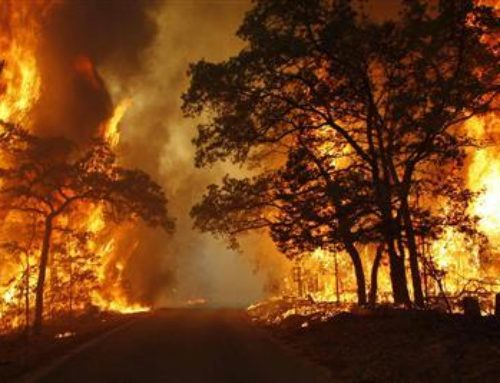 Ways to Better Protect Homes Against Wildfires